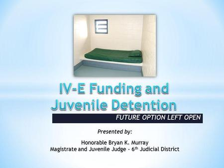 FUTURE OPTION LEFT OPEN Presented by: Honorable Bryan K. Murray Magistrate and Juvenile Judge - 6 th Judicial District.