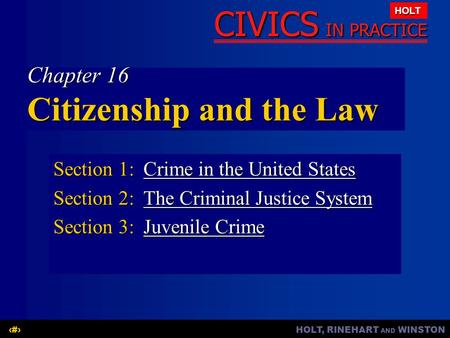 Chapter 16 Citizenship and the Law