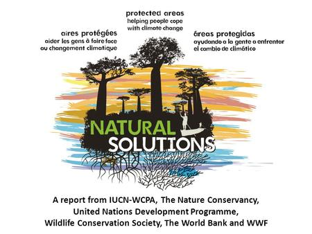 A report from IUCN-WCPA, The Nature Conservancy,