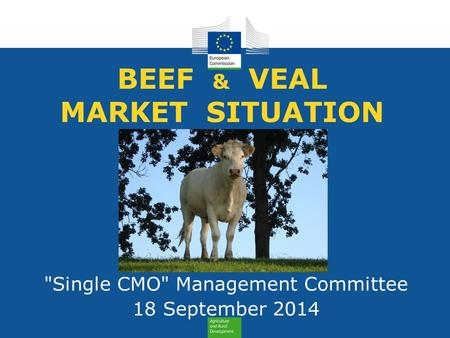BEEF & VEAL MARKET SITUATION Single CMO Management Committee 18 September 2014.