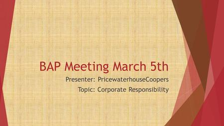 BAP Meeting March 5th Presenter: PricewaterhouseCoopers Topic: Corporate Responsibility.