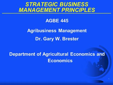 STRATEGIC BUSINESS MANAGEMENT PRINCIPLES