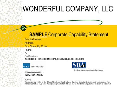 WONDERFUL COMPANY, LLC SAMPLE Corporate Capability Statement Principal Name Address City, State, Zip Code Phone: Fax: If applicable – list.
