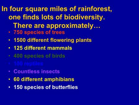 In four square miles of rainforest, one finds lots of biodiversity. There are approximately… 750 species of trees 1500 different flowering plants 125 different.