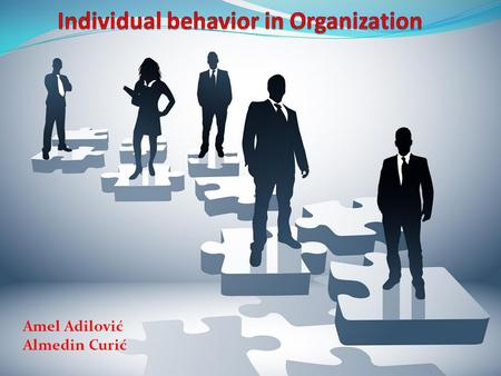 Amel Adilović Almedin Curić. Individual behavior refers to how individual behaves at work place, as a result of his personality and conditions in which.