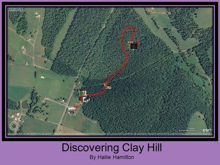 Discovering Clay Hill By Hallie Hamilton. Discovering Clay Hill Clay Hill is located on Old Lebanon Road in Campbellsville, Kentucky. Lebanon Middle School.