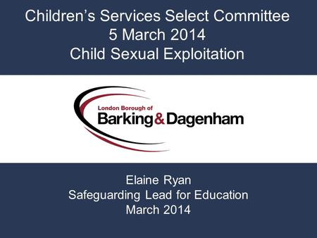 Children's Services Select Committee 5 March 2014 Child Sexual Exploitation Elaine Ryan Safeguarding Lead for Education March 2014.