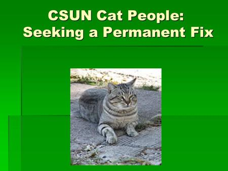CSUN Cat People: Seeking a Permanent Fix. Quick Feral Cat Facts:  1 female + her litter x 7 years = 420,000 cats!  50% of kittens born feral die  Average.
