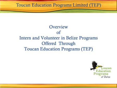 Overview of Intern and Volunteer in Belize Programs Offered Through Toucan Education Programs (TEP) Toucan Education Programs Limited (TEP)