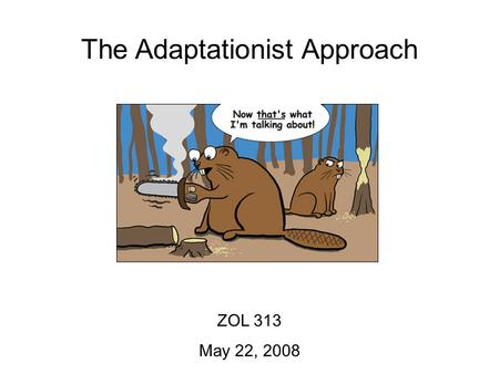 The Adaptationist Approach ZOL 313 May 22, 2008. The Adaptationist Approach ZOL 313 May 22, 2008 Objectives: 1.Be able to define an adaptation and identify.
