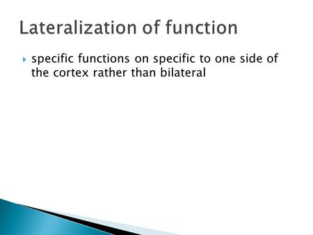  specific functions on specific to one side of the cortex rather than bilateral.