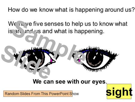 Sample Slide sight How do we know what is happening around us?