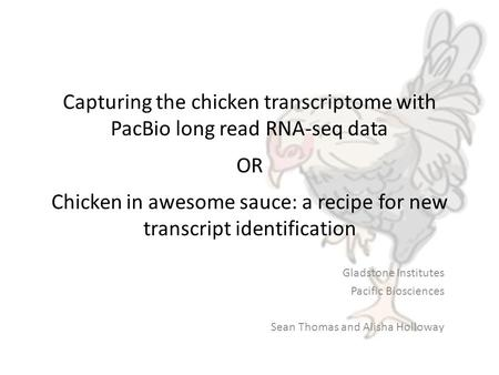 Capturing the chicken transcriptome with PacBio long read RNA-seq data OR Chicken in awesome sauce: a recipe for new transcript identification Gladstone.