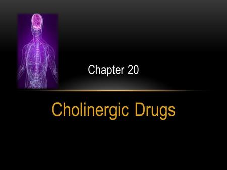 Chapter 20 Cholinergic Drugs.