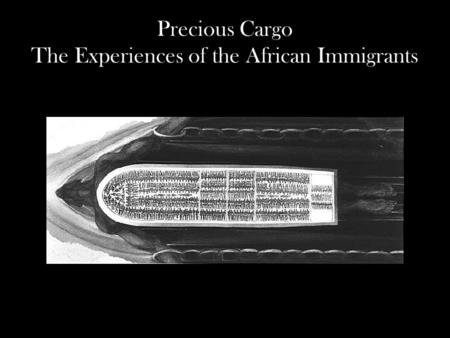 Precious Cargo The Experiences of the African Immigrants.