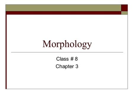 Morphology Class # 8 Chapter 3. Review  The study of construction of words is called….  The smallest linguistic unit that has meaning or grammatical.