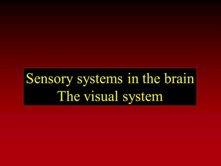 Sensory systems in the brain The visual system. Organization of sensory systems PS 103 Peripheral sensory receptors [ Spinal cord ] Sensory thalamus Primary.
