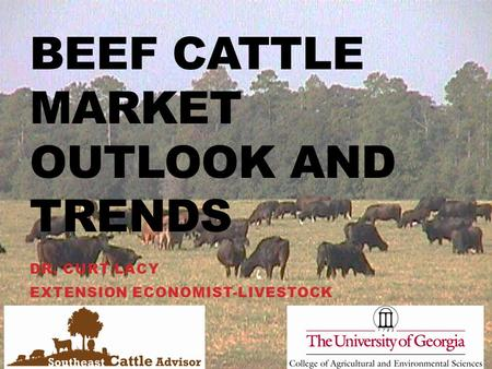 BEEF CATTLE MARKET OUTLOOK AND TRENDS DR. CURT LACY EXTENSION ECONOMIST-LIVESTOCK.