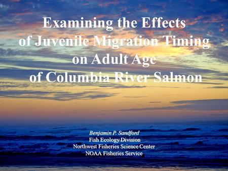 Examining the Effects of Juvenile Migration Timing on Adult Age of Columbia River Salmon Benjamin P. Sandford Fish Ecology Division Fish Ecology Division.