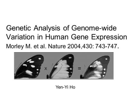 Genetic Analysis of Genome-wide Variation in Human Gene Expression Morley M. et al. Nature 2004,430: 743-747. Yen-Yi Ho.