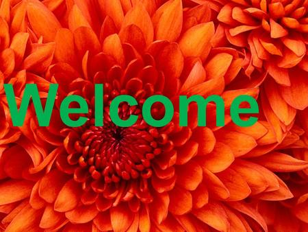Welcome. Teacher's Identity Sultan Ahmad Assistant Teacher Billi Govt. Primary school Tanore, Rajshahi.