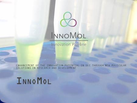 I NNO M OL ENHANCEMENT OF THE INNOVATION POTENTIAL IN SEE THROUGH NEW MOLECULAR SOLUTIONS IN RESEARCH AND DEVELOPMENT.