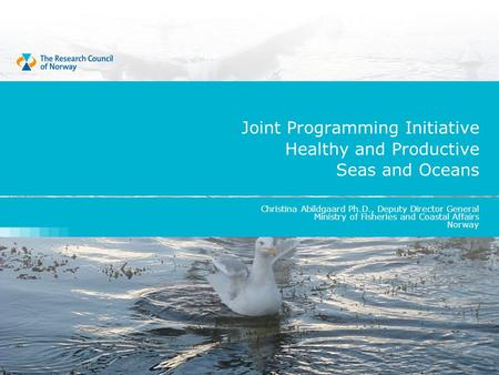 Joint Programming Initiative Healthy and Productive Seas and Oceans Christina Abildgaard Ph.D., Deputy Director General Ministry of Fisheries and Coastal.