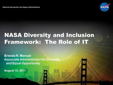 NASA Diversity and Inclusion Framework: The Role of IT
