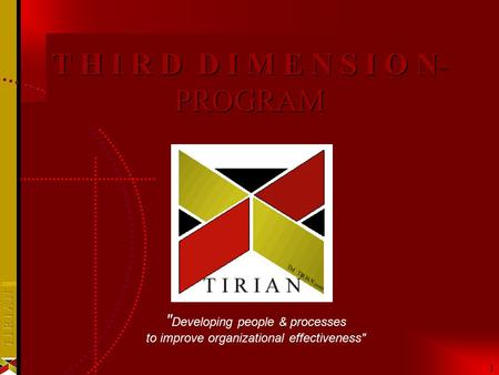 1 1 T H I R D D I M E N S I O N ™ PROGRAM  Developing people & processes to improve organizational effectiveness