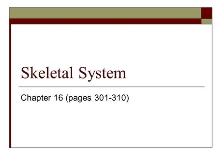 Skeletal System Chapter 16 (pages 301-310).
