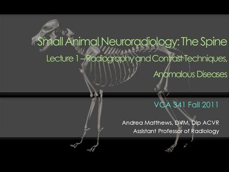 Small Animal Neuroradiology: The Spine Lecture 1 – Radiography and Contrast Techniques, Anomalous Diseases VCA 341 Fall 2011 Andrea Matthews, DVM, Dip.