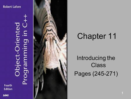1 Chapter 11 Introducing the Class Pages (245-271)
