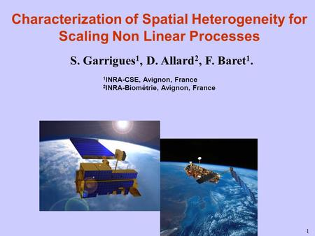 1 Characterization of Spatial Heterogeneity for Scaling Non Linear Processes S. Garrigues 1, D. Allard 2, F. Baret 1. 1 INRA-CSE, Avignon, France 2 INRA-Biométrie,
