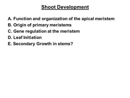Shoot Development A. Function and organization of the apical meristem