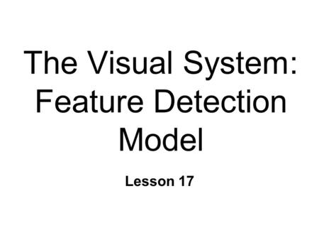 The Visual System: Feature Detection Model Lesson 17.