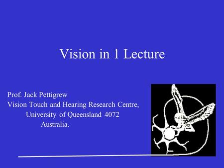 Vision in 1 Lecture Prof. Jack Pettigrew Vision Touch and Hearing Research Centre, University of Queensland 4072 Australia.