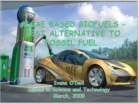 MY STANCE Biofuel made out of algae - best alternative to fossil fuel. No issues with deforestation, food shortages, and pollution.