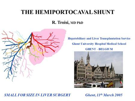 SMALL FOR SIZE IN LIVER SURGERY Ghent, 11 th March 2005 THE HEMIPORTOCAVAL SHUNT R. Troisi, MD PhD Hepatobiliary and Liver Transplantation Service Ghent.