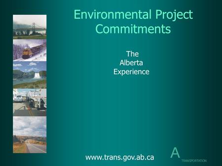 Environmental Project Commitments The Alberta Experience www.trans.gov.ab.ca.