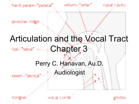 Articulation and the Vocal Tract Chapter 3 Perry C. Hanavan, Au.D. Audiologist.