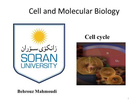 Cell and Molecular Biology Behrouz Mahmoudi Cell cycle 1.