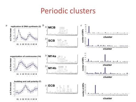 Periodic clusters. Non periodic clusters That was only the beginning…