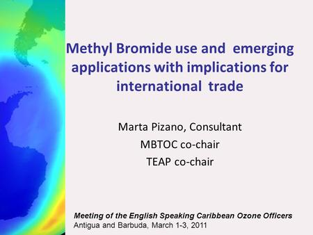 Methyl Bromide use and emerging applications with implications for international trade Marta Pizano, Consultant MBTOC co-chair TEAP co-chair Meeting of.