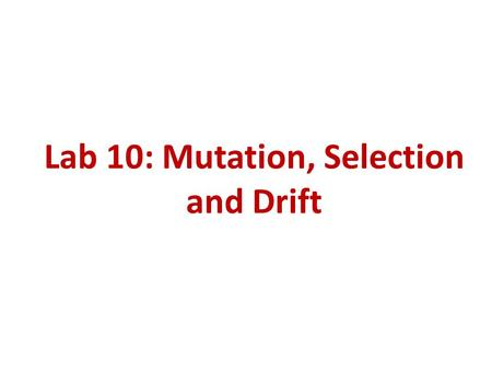 Lab 10: Mutation, Selection and Drift. Goals 1.Effect of mutation on allele frequency. 2.Effect of mutation and selection on allele frequency. 3.Effect.