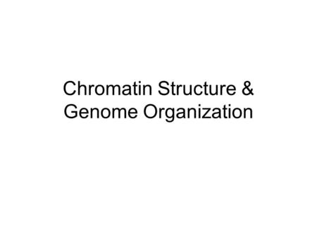 Chromatin Structure & Genome Organization. Overview of <strong>Chromosome</strong> Structure Nucleosomes –~200 bp DNA <strong>in</strong> 120 Å diameter coil –3.4 Å /bp x 200 = 680 Å –680/120.