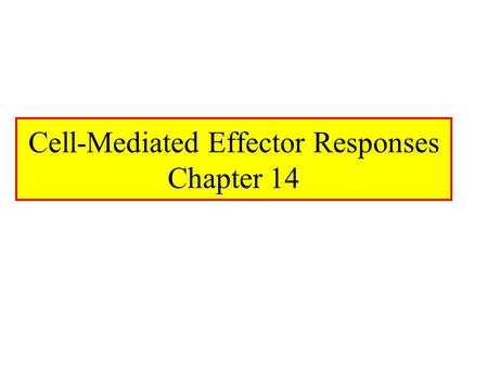 Cell-Mediated Effector Responses Chapter 14