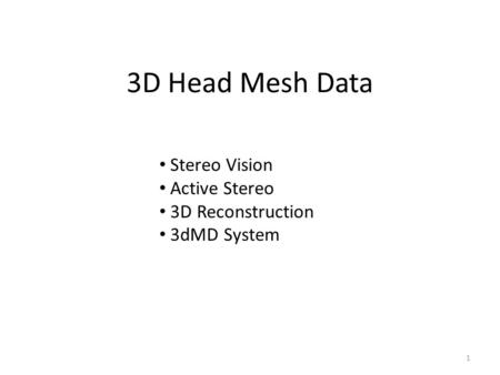 3D Head Mesh Data Stereo Vision Active Stereo 3D Reconstruction 3dMD System 1.