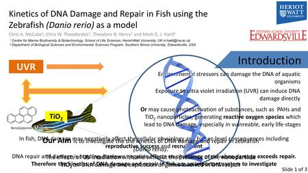 Kinetics of DNA Damage and Repair in Fish using the Zebrafish (Danio rerio) as a model Chris A. McCabe 1, Chris W. Theodorakis 2, Theodore B. Henry 1 and.