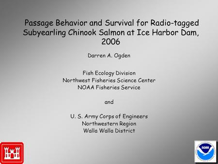 Passage Behavior and Survival for Radio-tagged Subyearling Chinook Salmon at Ice Harbor Dam, 2006 Fish Ecology Division Northwest Fisheries Science Center.