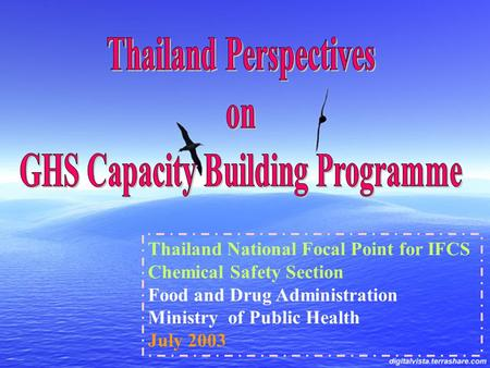 Thailand National Focal Point for IFCS Chemical Safety Section Food and Drug Administration Ministry of Public Health July 2003.